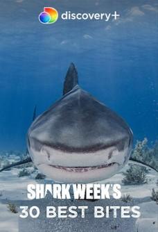 أفضل 30 لحظة في أسبوع القرش